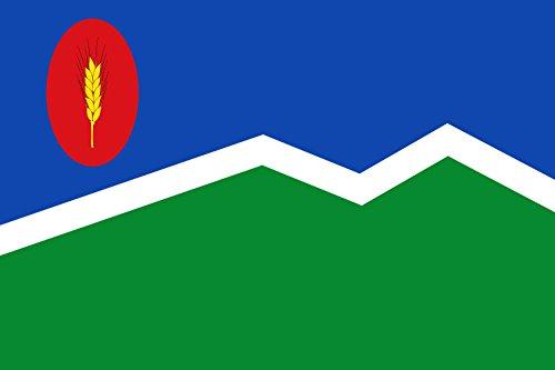 magFlags Bandera XL Mediana de Aragón-Zaragoza   bandera paisaje   2.16m²   120x180cm