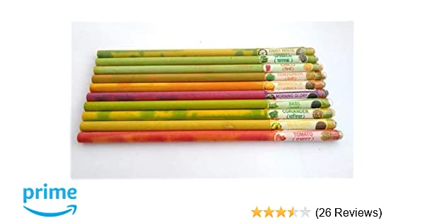 F Fabsouk 2B Environment Friendly Plantable Pencil With