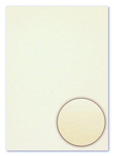 100 Blatt DIN A4 Fauna beidseitig filzmarkiert Creme Strukturpapier Feinstpapier Briefpapier mit einseitig geprägter Oberflächenstruktur (FPA-9008) (Geprägte Blätter)
