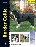 Border Collie (Excellence)