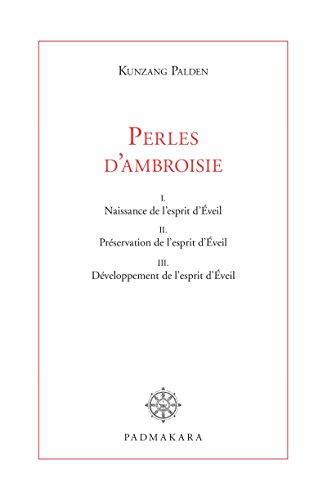 Perles d'ambroisie (French Edition)
