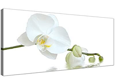 Modern Canvas Prints of White Orchids for your Living Room - Wide Floral Wall Art - 1134 - Wallfillers®