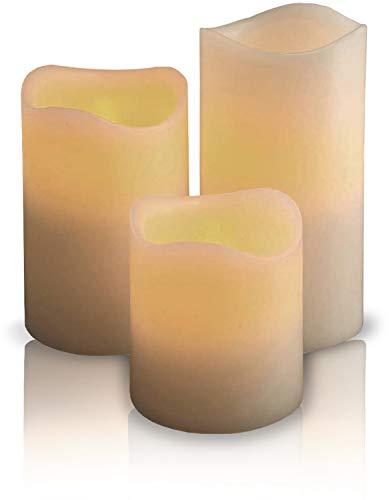 3 LED Kerzen aus Echtwachs - Wachskerzen klein inklusive Batterien - mit flackernder Flamme + ein gepflanzter Baum