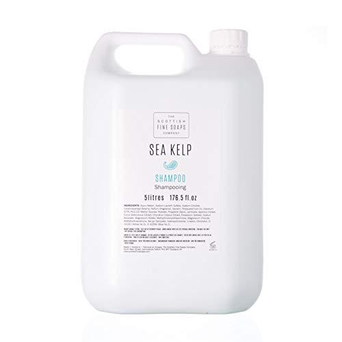 Scottish Fine Soaps Commercial Sea Kelp Hair Shampoo Refill - Sea Clean Shampoo