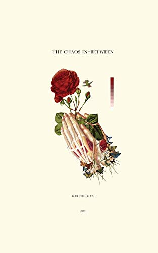 The Chaos In-Between por Gareth Egan