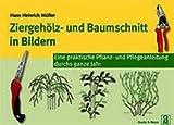 Ziergehölz- und Baumschnitt  in Bildern: Eine praktische Pflanz- und Pflegeanleitung durchs ganze Jahr
