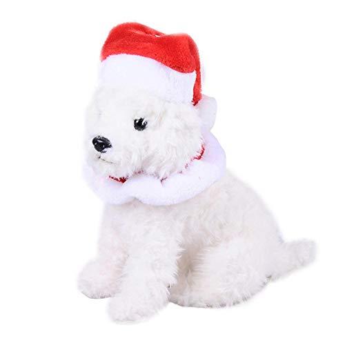 Biback Haustier Kostüm Halloween Kleidung, Halloween Und Weihnachten Cosplay Kostüm, Für Katze Und Hund Niedlichen Hut Und Kragen Kombination Mit Qualität Plüsch Material
