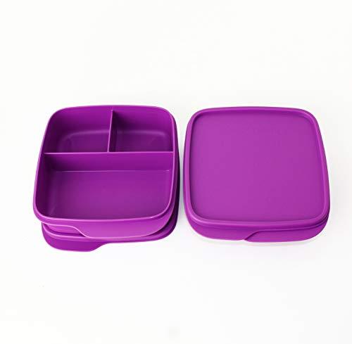Clevere Pause TUPPERWARE to Go Lunchbox 2X 550ml Fuschia mit 3-Fach Einteilung + Geschenk Eulentasche