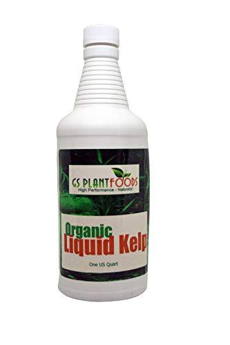 GS Plant Foods Flüssiger Kelp-Bio-Algen-Dünger 32 Unze 32 Unzen