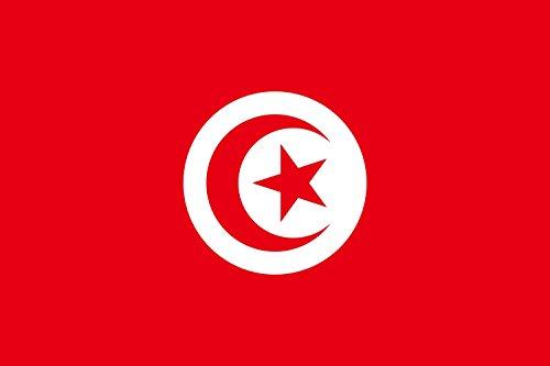 Preisvergleich Produktbild Unbekannt Flagge Tunesien / Querformat Fahne / 0.06m² / 20x30cm für Diplomat-Flags Autofahnen