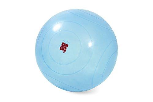 BOSU - Ballast Ball