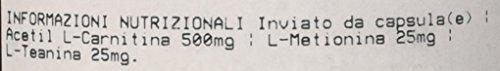Zoom IMG-1 prozis acetil l carnitina 90