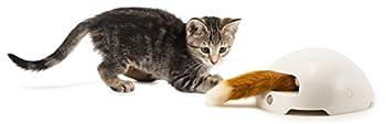 PetSafe - Jouet Terrier du Renard Automatique Interactif pour Chat Frolicat, avec Détecteur de mouvements