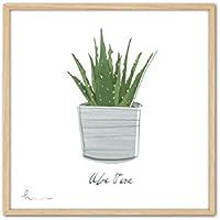 Cuadriman Aloe Vera Cuadro, Madera, Verde y Blanco, 42 x 42 cm