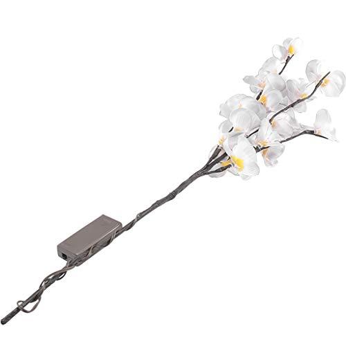 koperras Hauptbeleuchtung FüHrte Simulation GefäLschte Blumenniederlassung Phalaenopsis Beleuchtet SchöNes Retro- Temperament