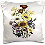 BLN Vintage Flower Collection - Cosmea, Boerkhausia, Madia, Chrysanthemum, Dracopis, Gaillardia, Tagetes, Senecio Flowers marigolds - 16x16 inch Pillow Case