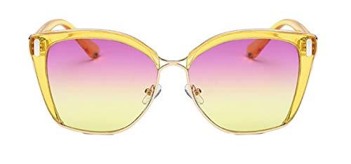 Tianba Sonnenbrillen Damen Farbiger Kunststoff Brillen Sommer Ideal Radbrille Anti-UV Brille Large-Gerahmte Winddicht Spiegel