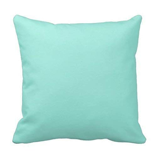 Light Aquafresh Aqua Blue Green Fashion Color Square Custom Throw Pillow Case Cushion Cover Pillowcase Pillow Cover for Couch Sofa Or Bed Set Cozy Home Decor Size:16 X 16 Inches/40cm x 40cm (Aquafresh Kids)