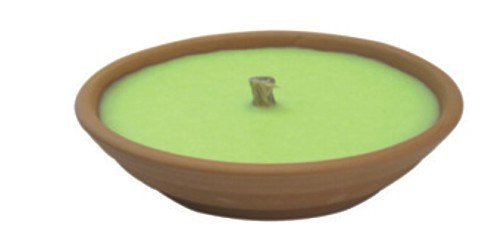 Papillon 8045205 Vela Antimosquitos Citronela Recipiente Terracota 14 cm. / 120 Gramos