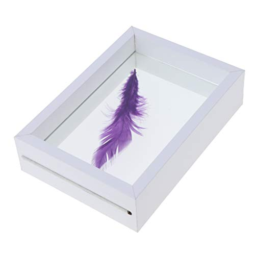Baoblaze Artwork Display Frame, Fotorahmen Holz Doppelseitig Rechteck Tabletop Picture Frame 6 Zoll Für Pflanzenproben - Weiß 10x13,5x4cm, wie beschrieben -