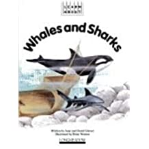 Whales and sharks (Learn about)