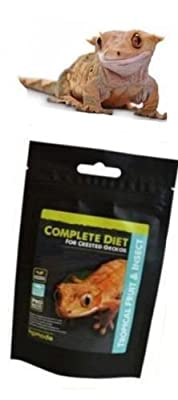 Happypet® Komodo Complete Crested Gecko Diet 60g (2.11oz) Similar to Pangea - Probiotic (Tropical Fruit & Insect) by Komo-do