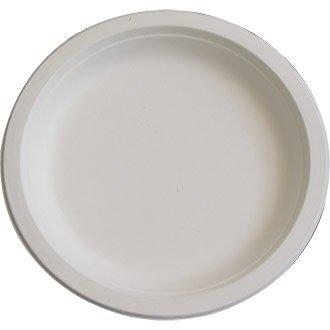 Lot de 125 assiettes jetables biodégradables pour pique-niques et fêtes 17 cm