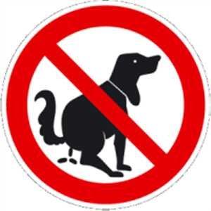 Schild Verbotszeichen Hier kein Hundeklo Alu 20cm Ø (Hundekot, Hundehaufen, Hundetoilette) praxisbewährt, wetterfest