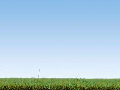 NOCH 08155 - Streugras Blumenwiese, Sonstige Spielwaren, 2.5 mm