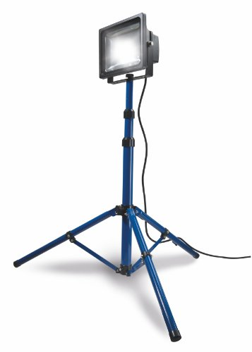 as - Schwabe Chip-LED-Strahler mit Stativ – 30 W Profi Baustrahler – LED Spot geeignet als Arbeitsleuchte – LED Leuchte für die Außenbeleuchtung – Reduzierter Energieverbrauch - Blau I 46903