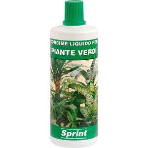 Concime liquido 'piante verdi' prodotto sviluppato appositamente per garantire nutrizione bilanciata a piante verdi coltivate in vaso a casa o in balconi.