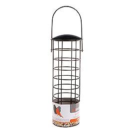 chenpaif Mangiatoia per Uccelli All'aperto Uccelli Selvatici Alimentazione Giardino Parco Albero Prodotti appesi Contenitore per Alimenti Verdura Pappagallo Maglie Portatile Come Mostrato nelle Foto