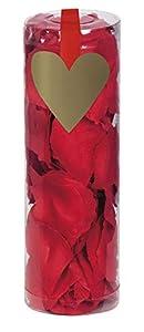 Boland 48020-Cilindro con pétalos de rosa, 288unidades, color rojo