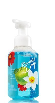 Bath and Body Works - Gentle Foaming Hand Soap Beautiful Day Bath and Body Works