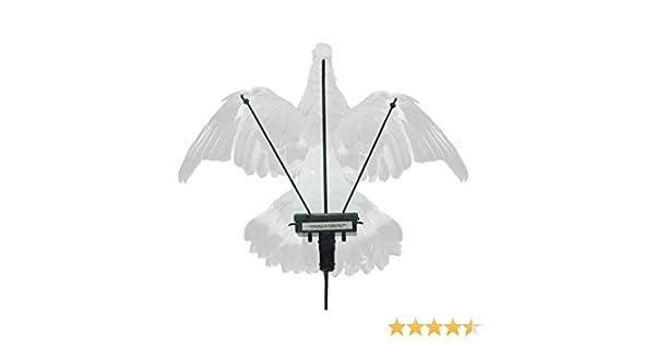 Turbo pigeon Baiss/ée gar/çonne avec 2/ans de garantie Inc Standard Minuteur