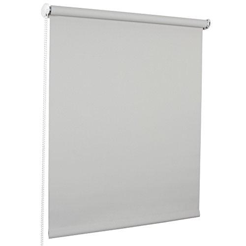 ROLLMAXXX Standard-Rollo Lichtdurchlässig Seitenzug Kettenzugrollo Tageslicht Sichtschutz (180 x 190 cm, Grau)