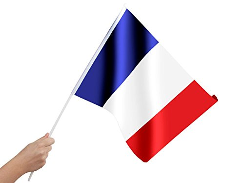 bandierina-da-mano-con-asticina-per-tifosi-francia-00-0822-europei-mondiali-francese-calcio-coppa-eu