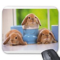 Lovely Rabbit Mousepad Series Rabbit in Mag Mouse Pad Bunny