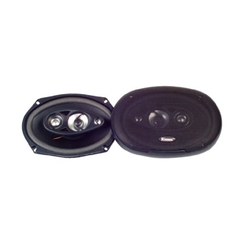 riesen-l-23-at-car-speakers