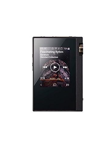 Onkyo DP-X1 Baladeur numérique Mémoire Interne MP3 Ecran Tactile