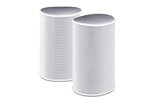 pioneer-fs-w-della-s40-wireless-surround-altoparlante-portatile-bianco