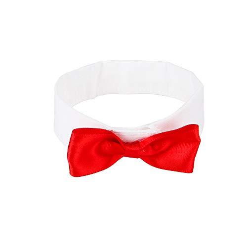Halloween Großer Vogel Kostüm - ZZM Haustier-Halsband mit Fliege, klassisch, formelle Baumwolle mit roter Schleife, Verstellbarer Halsband, Dekoration, für Papageien und Halloween, Hochzeit, Party, Kostüm