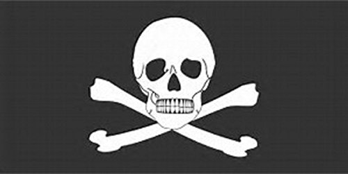 Bandera de calavera y huesos cruzados de 1,52 m x 7,62 cm