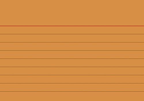 Brunnen 102270140 Karteikarte (A7 liniert, 100 Stück, eingeschweißt) orange
