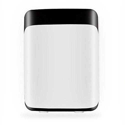 LT&NT Réfrigérateur de Mini, Réfrigérateur de Ménage/Voiture électrique DE 10 l, Boîte de Refroidissement/Chauffage, Réfrigérateur portatif pour la Partie campante de Voyage, 12V/110V/220V-240V, Noir