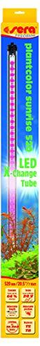 sera 31253 LED plantcolor sunrise 520 - Farbverstärkendes Pflanzenlicht für optimales Pflanzenwachstum (2.450 Kelvin) -