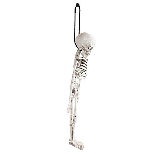 Fenteer Schreckliche Halloween Skelett Deko Skelett Hängend Skelett auf Wand Tür und Garten ()