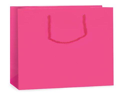 Hot Pink Matte Gift Bags Mediumbulk 13X5X10 inch 100 pack
