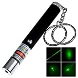 #4: DFS's quality STAR GREEN LASER DISCO POINTER KEYCHAIN -- With Adjustable Cap To Change Project Design -- A perfect Corporate Gift