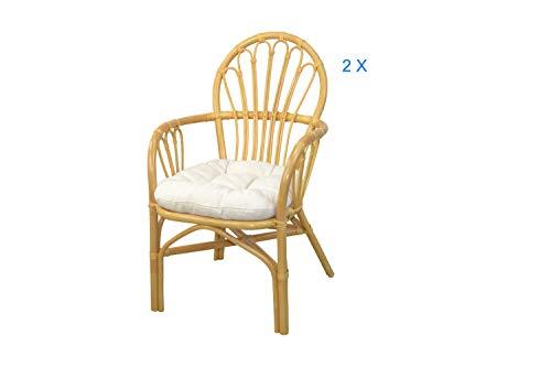 moebel direkt online 2er-Set Rattanst/ühle /_ Rattansessel 2 St/ück mit passendem Sitz und R/ückenkissen